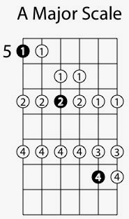Major Scale Sequncing in 6